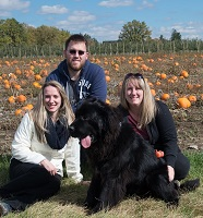 Newfoundland dog: Finley (Ike x Willow) in the pumpkin patch!